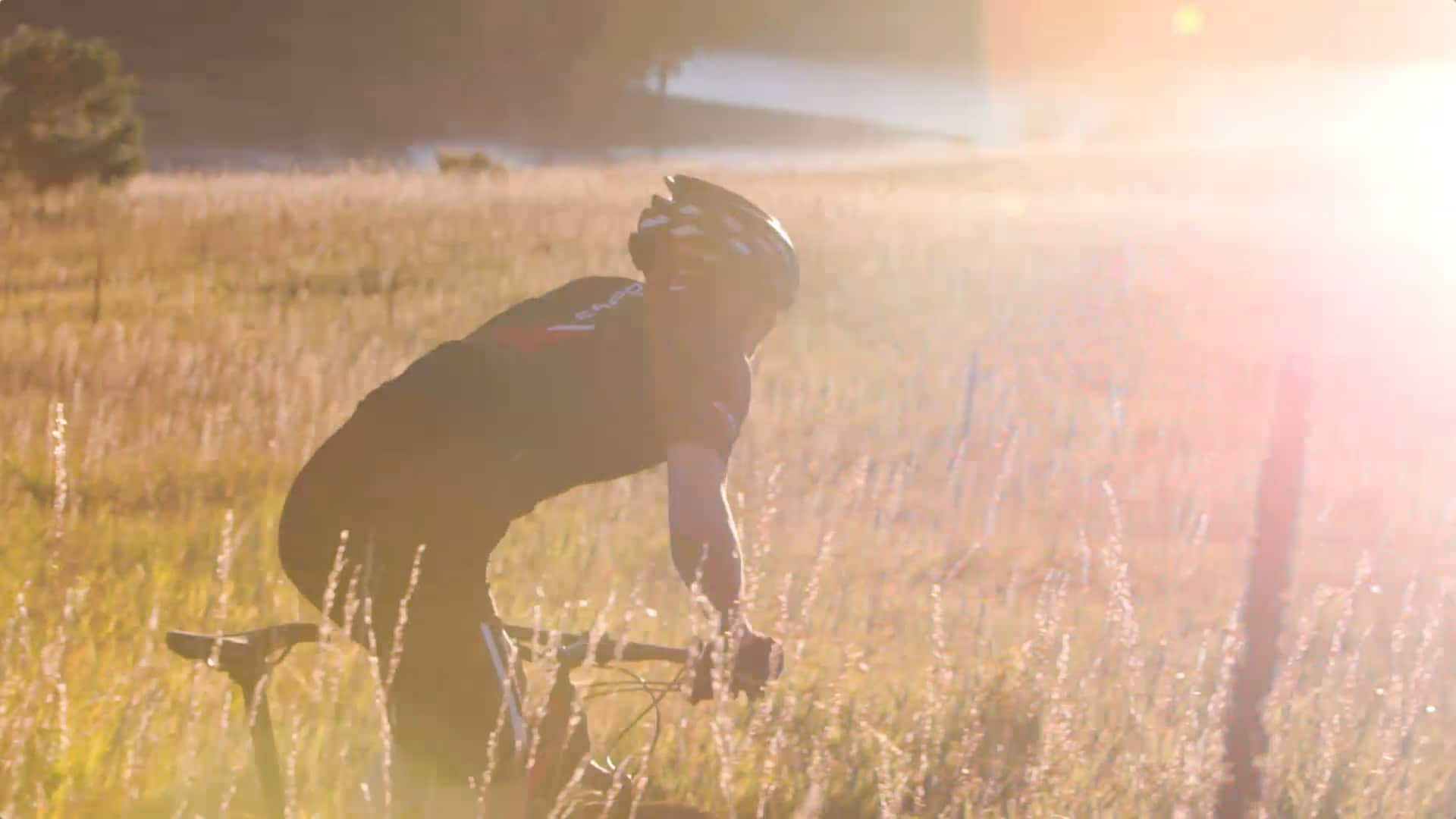FedEx – Niner Bikes Online Video